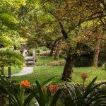 Alfred Nicholas Gardens | Sherbrooke Dandenong Ranges