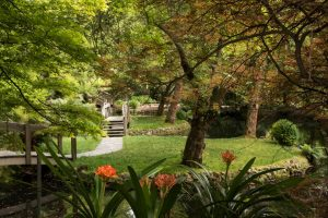 alfred-nicholas-gardens-dandenong-ranges