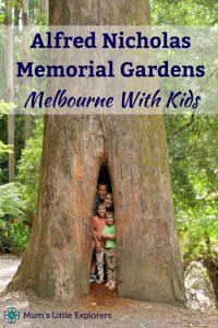 Alfred Nicholas Memorial Gardens - Dandenong Ranges