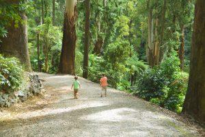 alfred-nicholas-gardens-melbourne-kids