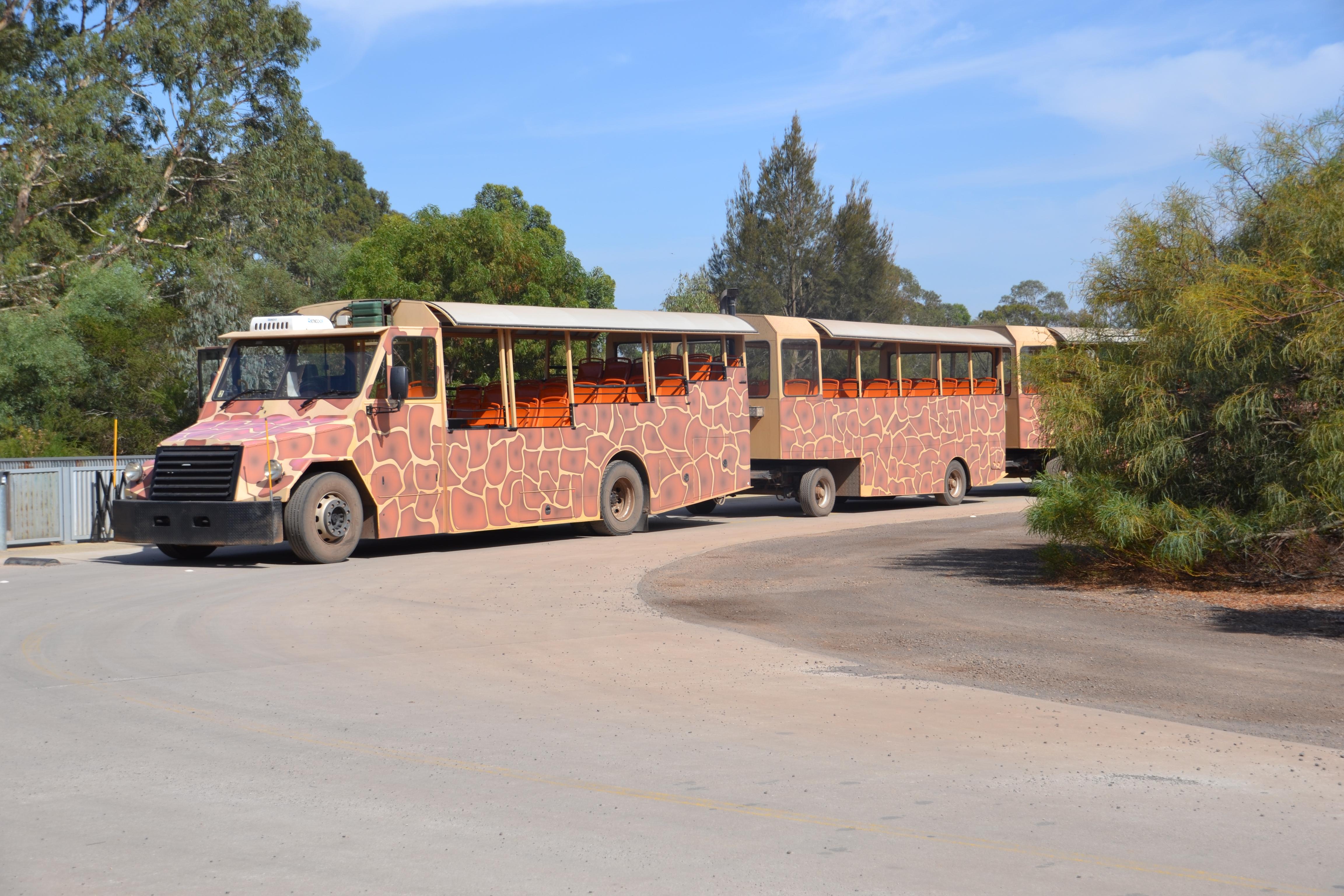 werribee-zoo-safari-melbourne