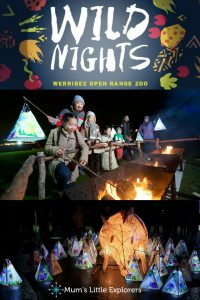 Wild Nights at Werribee Zoo - School Holiday Activities for Kids