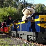 Eltham Miniature Railway, Diamond Valley – Teddy Bear's Picnic 2018