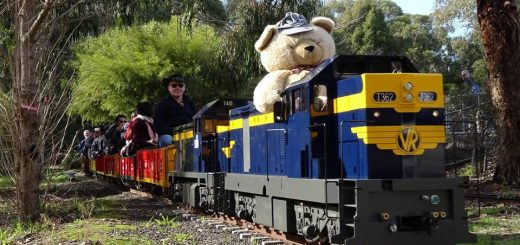 Teddy Bears Picnic Diamond Valley Railway