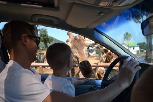 Fasano Zoo, Puglia, Italy Family Holiday