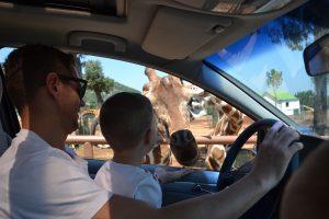 Fasano Zoo, Puglia, Italy Family Holiday