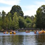 10 Easy Day Trips from Melbourne for Families with Kids
