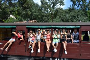 Puffing Billy Steam Train - Day trips Melbourne