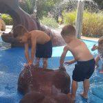School Holiday Activities in Melbourne – Summer 2018 / 2019