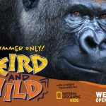 National Geographic Kids: Weird and Wild comes to Werribee Zoo