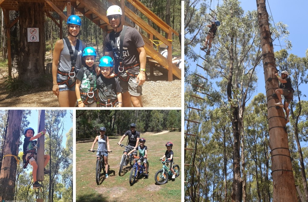 King Lake Forest Adventures - Climbing for Kids