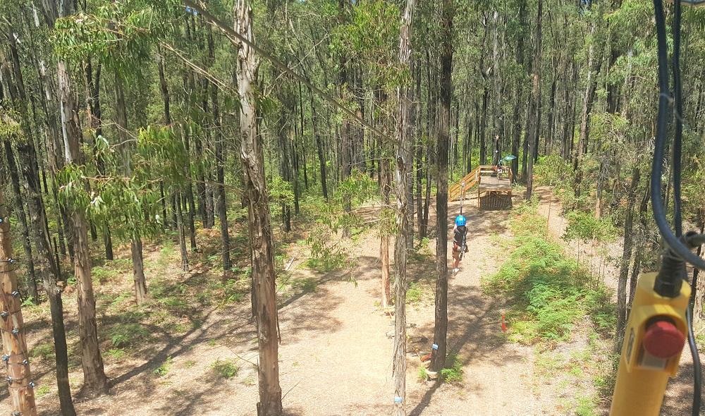 King Lake Forest Adventures Zipline