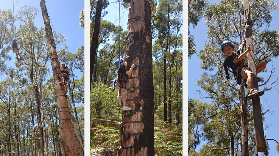 Kinglake Forest Adventures Outdoor Climbing Walls