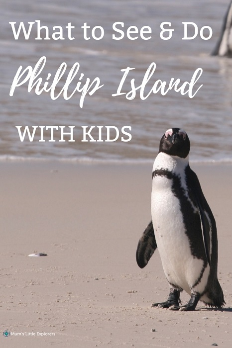 Phillip Island with Kids