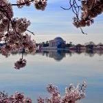 10 Things To Do in Washington, D.C. with Kids