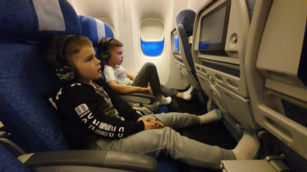Plane Pal Review