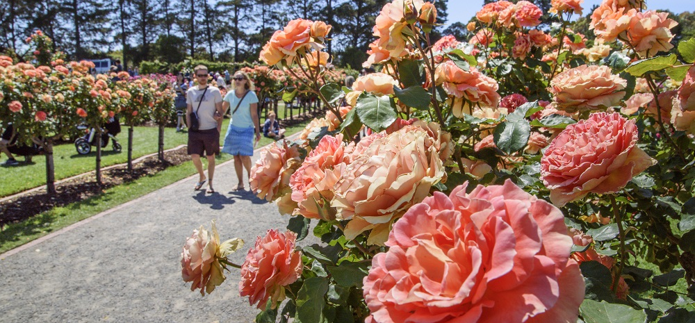 Werribee Park: Rose and Garden Show Family Event