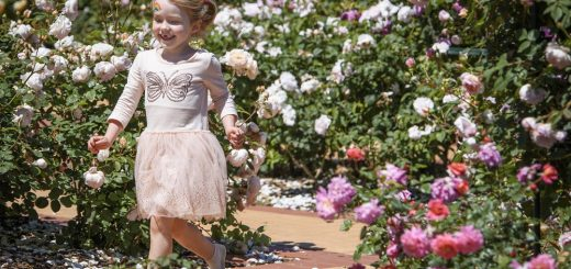 Werribee Park Family Event: Rose and Garden Show