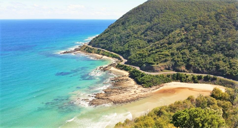Teddys Lookout Lorne Things to Do