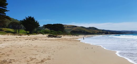 13 Things to do in Apollo Bay