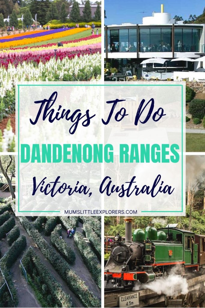 Things to do Dandenong Ranges Victoria