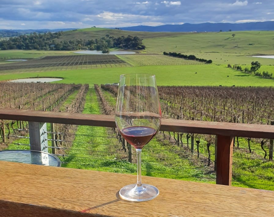 Things to do Yarra Valley - Wine Tasting