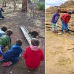 Junior Rangers Programs – Getting Close to Nature with Parks Victoria