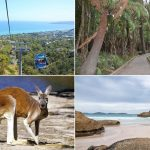 9 Amazing National Parks Near Melbourne, Victoria
