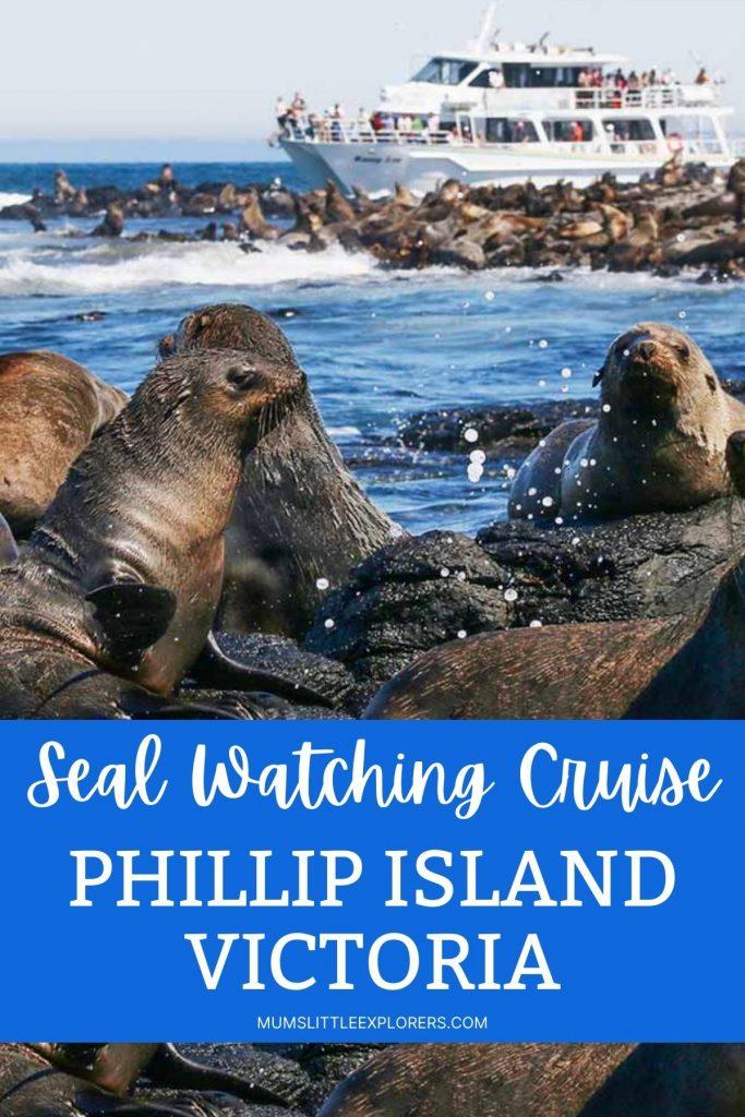 Seal Watching Wildlife Cruise Phillip Island