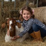 Chesterfield Farm Scoresby – Animal Farm for Kids in Melbourne