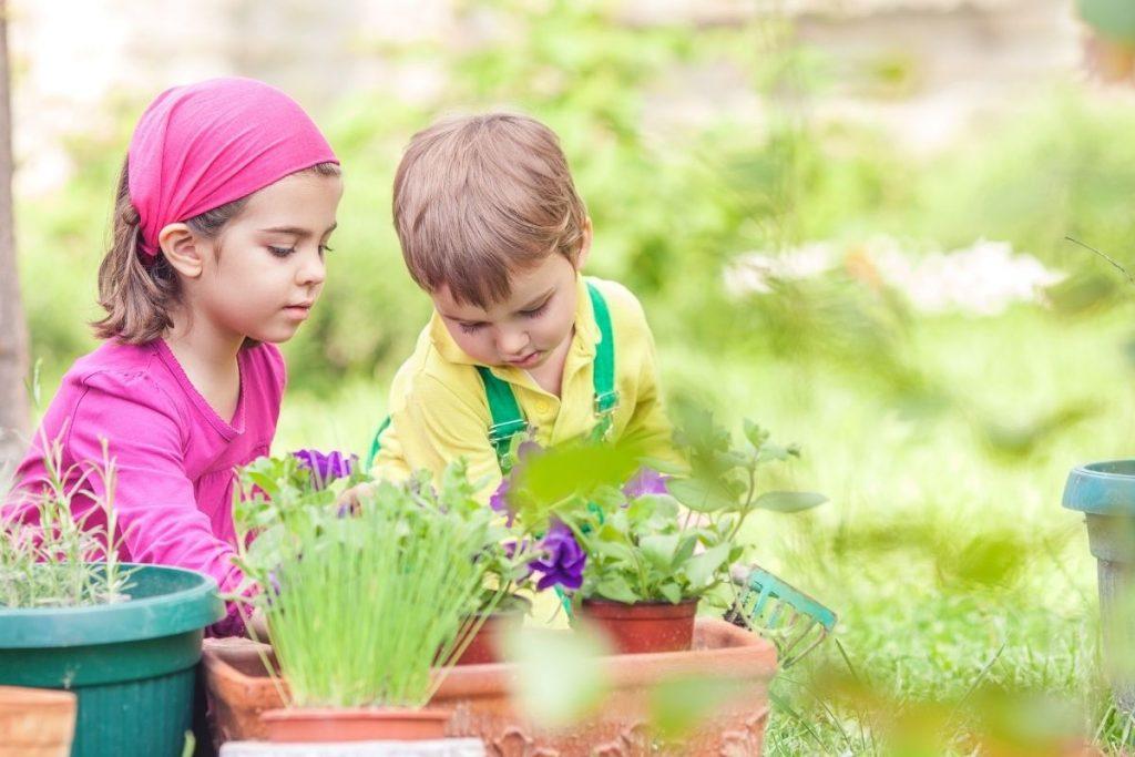 Gardening a sensory activity for preschoolers