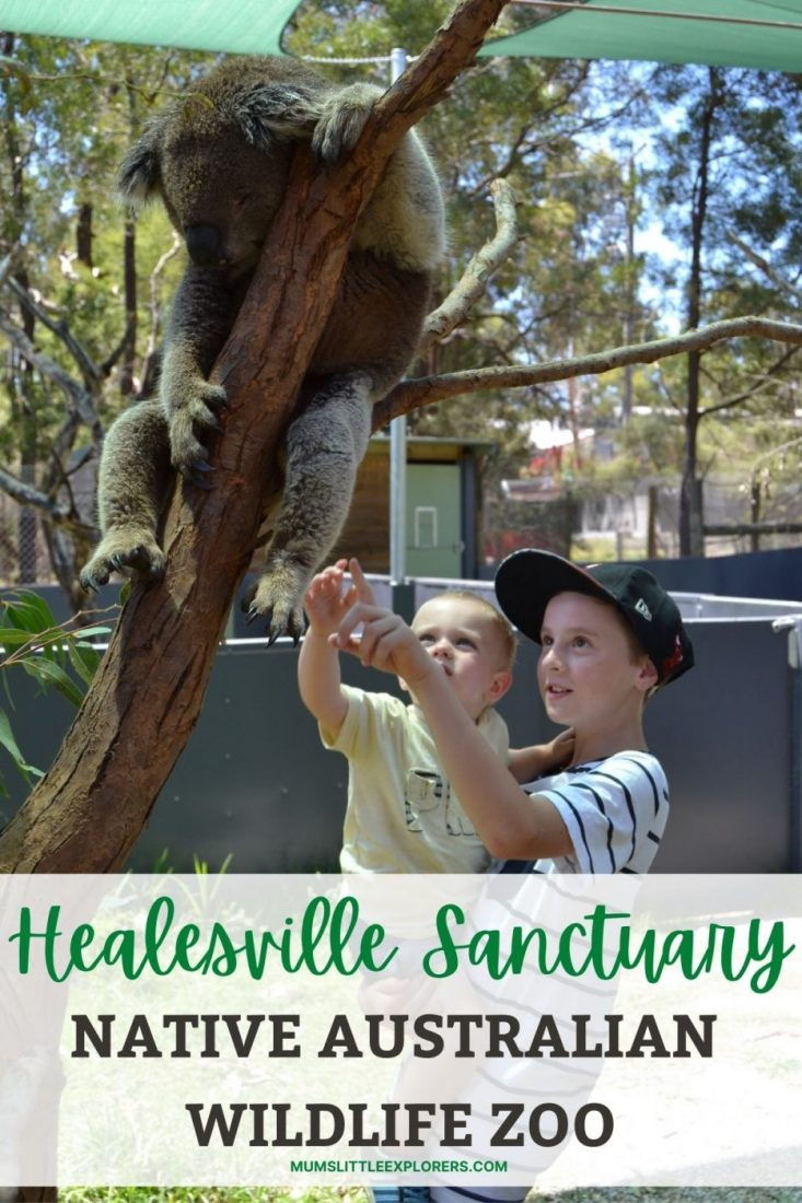 Healesville Sanctuary Australian Wildlife Zoo Melbourne