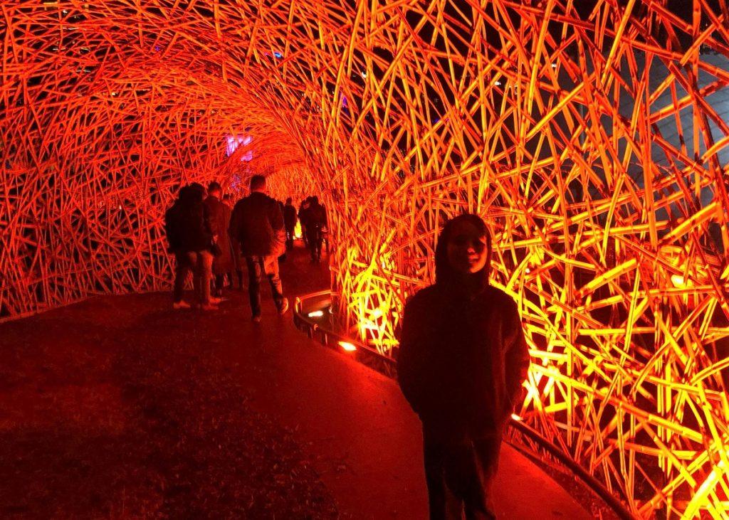 Rising Festival Lights Melbourne