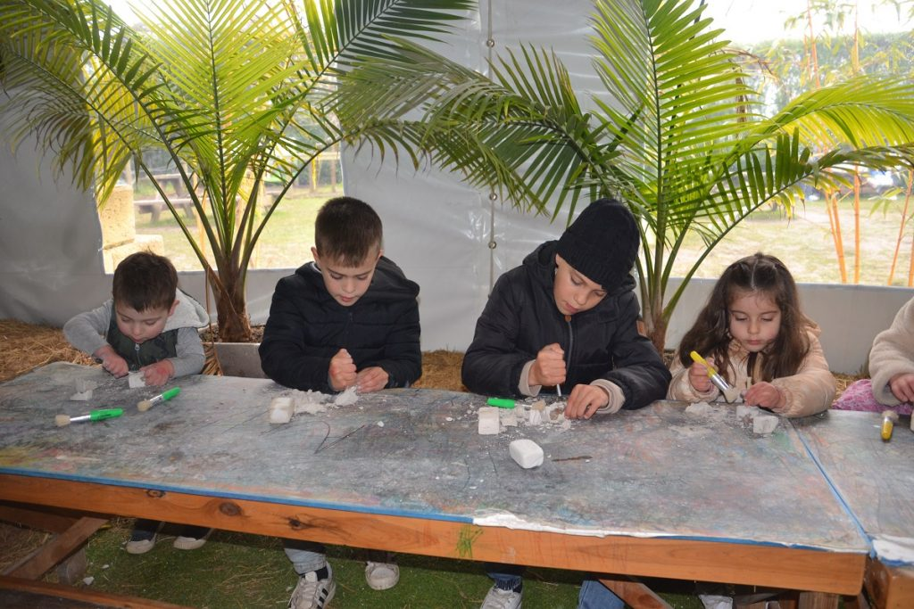 Dig and Discover Dinosaur world activities