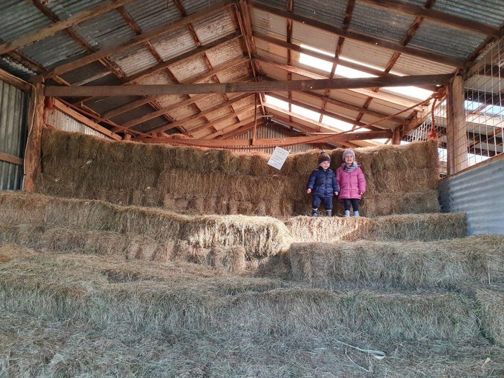 Hay Stacks at Rain Hayne Shine