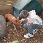 Rain Hayne & Shine Farmyard & Mobile Farm, Balnarring
