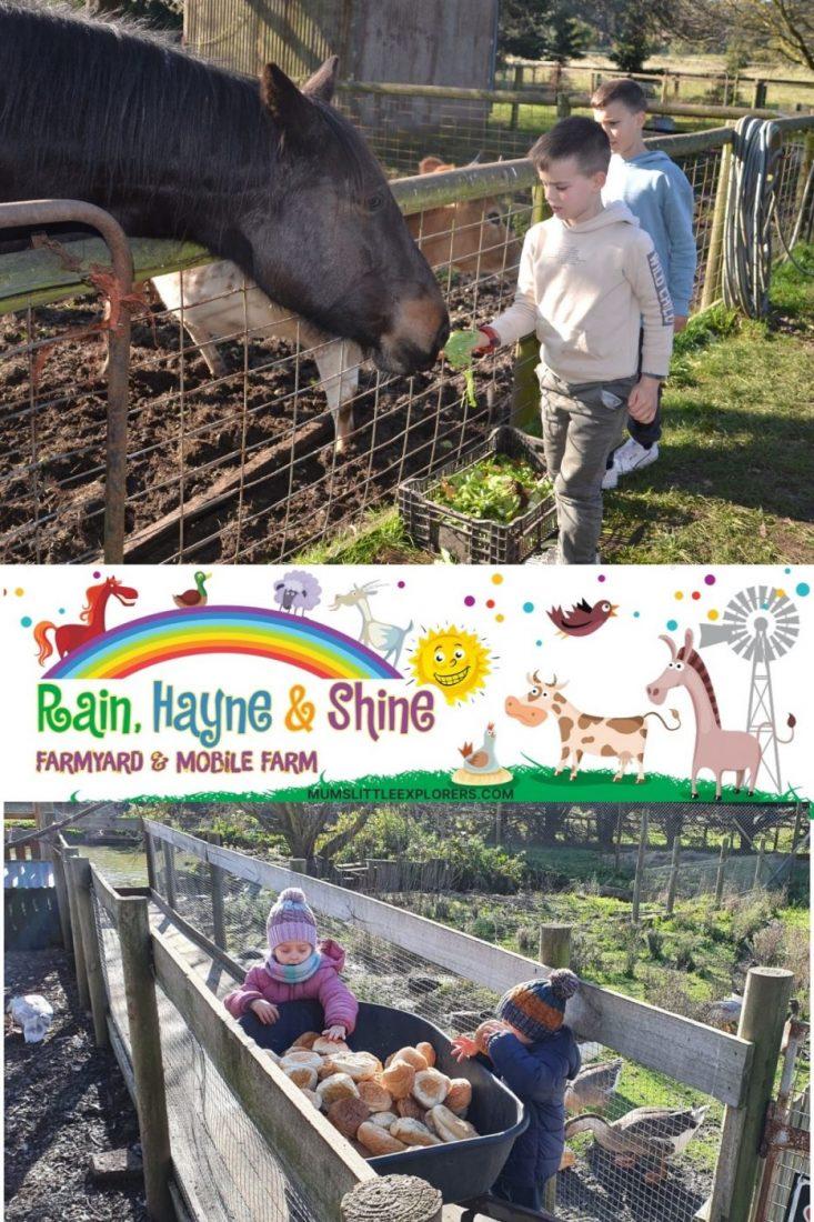 Rain Hayne & Shine Farmyard
