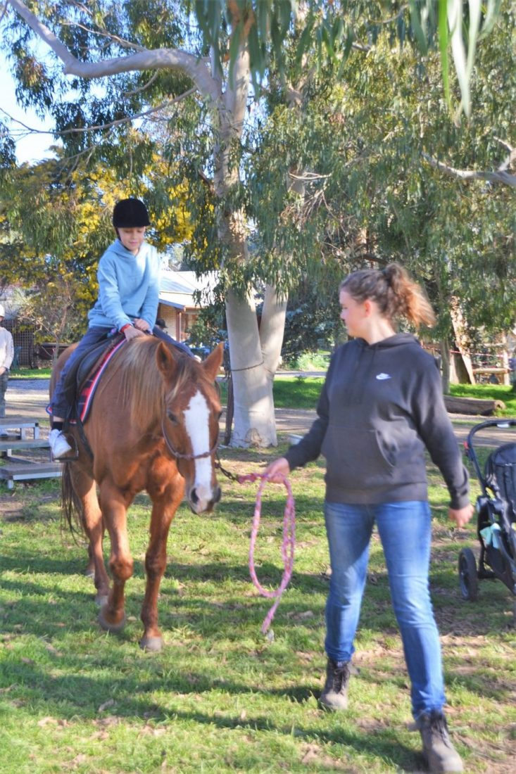 Rain Hayne Shine riding horses