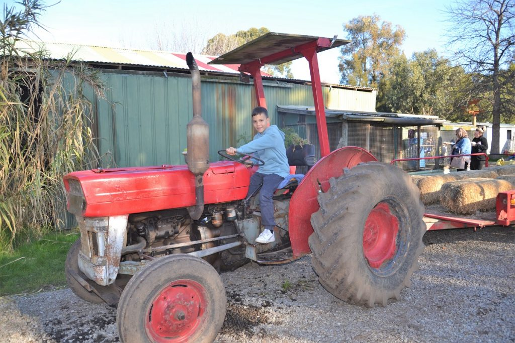 Tractor Ride Rain Hayne & Shine