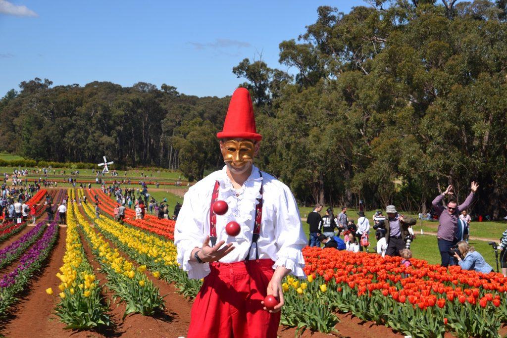Tulip Festival Clown