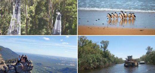 Regional Victoria Holiday Destinations for Families