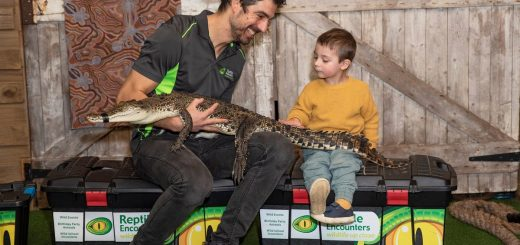 Reptile Encounters Melbourne Mobile Zoo